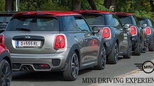 Mini Driving Experience 2016.