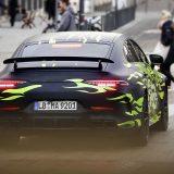 autonet_Mercedes-AMG_GT4_2018-02-21_004