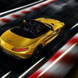 autonet_Mercedes-AMG_GT_S_Roadster_2018-05-15_003