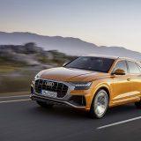 autonet_Audi_Q8_2018-06-05_001