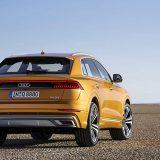 autonet_Audi_Q8_2018-06-05_005