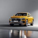 autonet_Audi_Q8_2018-06-05_014