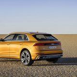 autonet_Audi_Q8_2018-06-06_002
