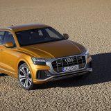 autonet_Audi_Q8_2018-06-06_003