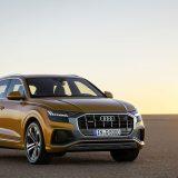 autonet_Audi_Q8_2018-06-06_004