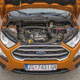 Jedini benzinski motor u ponudi je 1,0-litreni Ecoboost koji je punih šest godina zaredom proglašavan motorom godine u svojoj kategoriji
