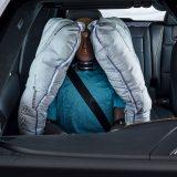 autonet.hr_Mercedes-Benz_ESV_2019-05-21_022